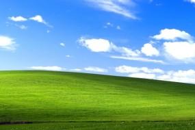 windows_xp_bliss-wide-798x350